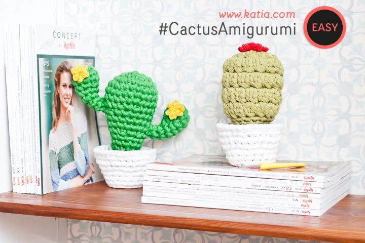 Amigurumi-Kakteen