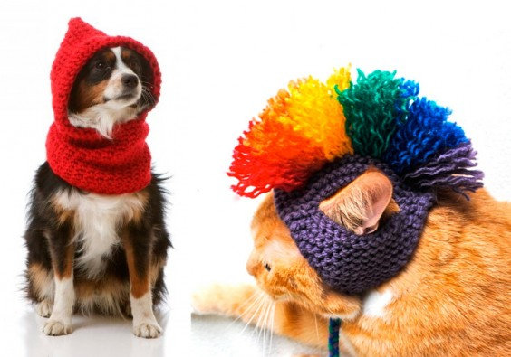 pets-crochet-knit-ideas
