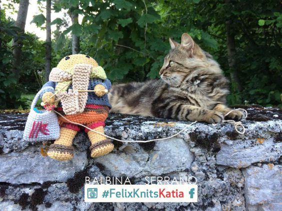 Knit in public with Felix