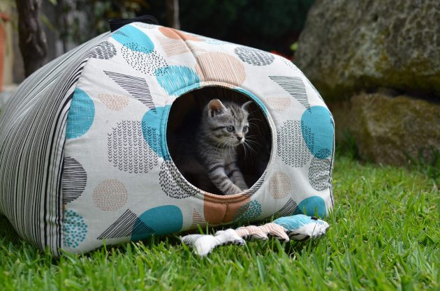 patron de casita de gato